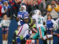 NFL_owens3.jpg