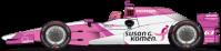63-SusanGKomen-SS-Indy
