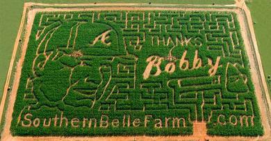Bobby Cox Corn Maze.jpg